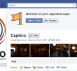 Captico New Facebook Pages Layout